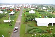 Expo-Champs,  Saint-Hyacinthe